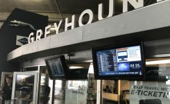 MessagePoint.tv Greyhound Network Highlighted